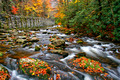 A Fall River in the Smoky Mountains